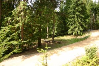 Photo 16: 11 6432 Sunnybrae Road in Tappen: Steamboat Shores Vacant Land for sale (Shuswap Lake)  : MLS®# 10155187