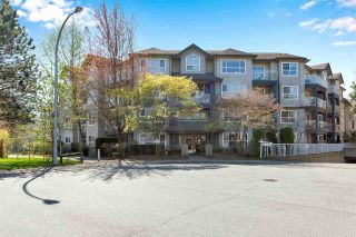 """Photo 1: 216 8115 121A Street in Surrey: Queen Mary Park Surrey Condo for sale in """"The Crossing"""" : MLS®# R2567658"""