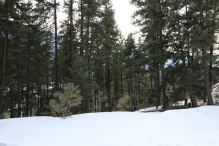 Photo 3: 33 2481 Squilax Anglemont Road in Lee Creek: Land Only for sale : MLS®# 10077079
