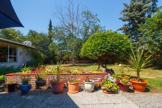 Photo 26: 4260 Wilkinson Rd in : SW Layritz House for sale (Saanich West)  : MLS®# 850274