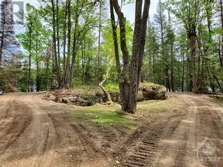 Photo 13: 2600 CLYDE LAKE ROAD in Lanark: Vacant Land for sale : MLS®# 1253879