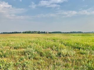 Main Photo: 84024 249 Avenue E: Rural Foothills County Residential Land for sale : MLS®# A1130347