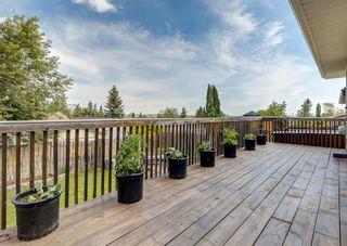 Photo 44: 12 Macewan Park Link NW in Calgary: MacEwan Glen Detached for sale : MLS®# A1121095