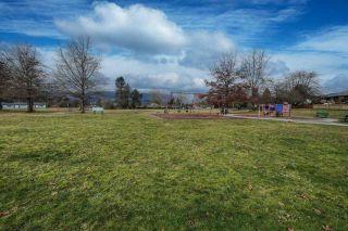 Photo 38: 21150 123 Avenue in Maple Ridge: Northwest Maple Ridge House for sale : MLS®# R2537907