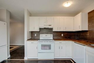 Photo 22: 23 SUNVALE Court SE in Calgary: Sundance Detached for sale : MLS®# C4297368