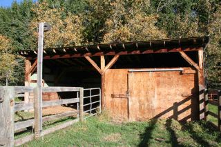 Photo 13: RR 220 And HWY 18: Rural Thorhild County House for sale : MLS®# E4227750