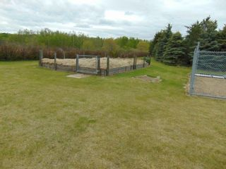 Photo 17: 241 52411 RGE RD 214: Rural Strathcona County House for sale : MLS®# E4246757