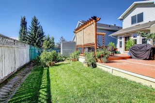 Photo 38: 690 Coventry Drive NE in Calgary: Coventry Hills Detached for sale : MLS®# A1144228
