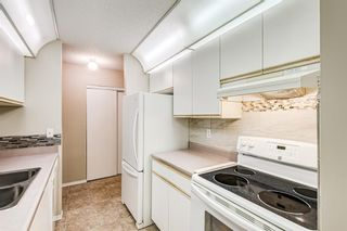 Photo 7: 103 11 Dover Point SE in Calgary: Dover Apartment for sale : MLS®# A1144552