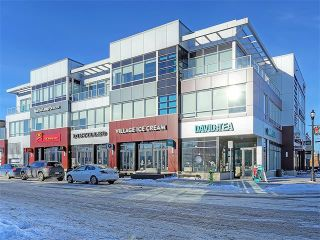 Photo 40: 207 2416 34 Avenue SW in Calgary: South Calgary House for sale : MLS®# C4094174