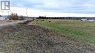 Photo 21: 5675 BLACKBURN ROAD in PG Rural South (Zone 78): Vacant Land for sale : MLS®# C8034975