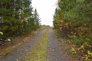 Photo 9: LOT A 37 Highway: Kitwanga Land for sale (Smithers And Area (Zone 54))  : MLS®# R2506362