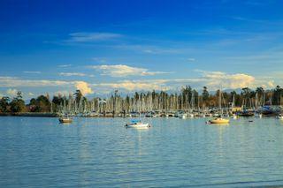 Photo 7: 3000 Valdez Place in : Uplands Land for sale (Oak Bay)  : MLS®# 415623