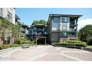 "Photo 12: 204 12020 207A Street in Maple Ridge: Northwest Maple Ridge Condo for sale in ""WESTBROOKE"" : MLS®# V1109916"