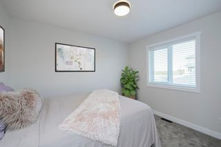 Photo 26: 193 Rainbow Falls Glen: Chestermere Detached for sale : MLS®# A1147433