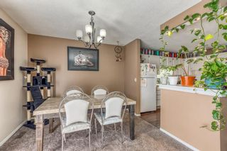 Photo 9: 5258 19 Avenue NW in Calgary: Montgomery Semi Detached for sale : MLS®# A1131802