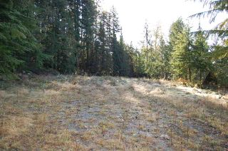 Photo 3: 9850 LINDSAY Terrace in Mission: Mission BC Land for sale : MLS®# R2331849