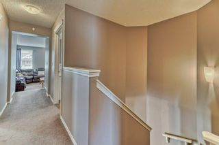Photo 24: 7 SKYVIEW RANCH Crescent NE in Calgary: Skyview Ranch Detached for sale : MLS®# A1109473