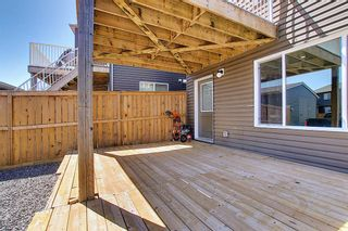 Photo 47: 26 Evanscrest Heights NW in Calgary: Evanston Detached for sale : MLS®# A1127719