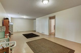 Photo 24: 55 Thornbird Way SE: Airdrie Detached for sale : MLS®# A1114077