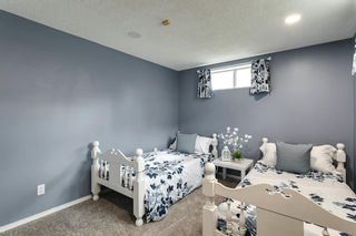 Photo 23: 11 Sanderling Hill NW in Calgary: Sandstone Valley Detached for sale : MLS®# A1149662