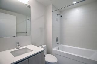 Photo 26: 1710 1122 3 Street in Calgary: Beltline Apartment for sale : MLS®# A1153603