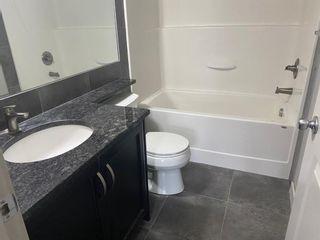 Photo 7: 1217 6118 80 Avenue NE in Calgary: Saddle Ridge Apartment for sale : MLS®# A1131832