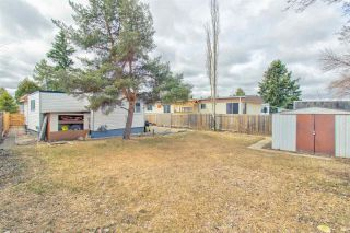 Photo 24: 253 LEE RIDGE Road in Edmonton: Zone 29 House for sale : MLS®# E4237736