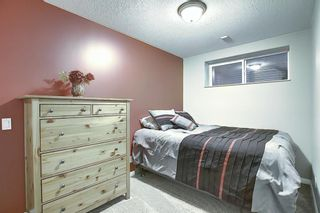Photo 41: 1009 Prairie Springs Hill SW: Airdrie Detached for sale : MLS®# A1042404