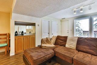 Photo 26: 56 MACEWAN GLEN Drive NW in Calgary: MacEwan Glen House for sale : MLS®# C4173721