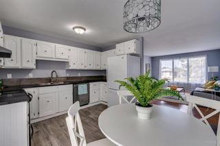 Photo 9: 644 RADCLIFFE Road SE in Calgary: Albert Park/Radisson Heights Detached for sale : MLS®# A1025632