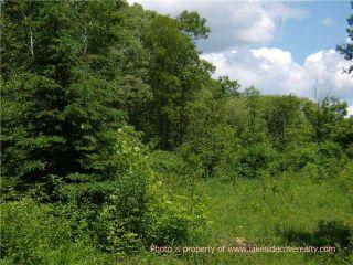 Photo 1: 4128 Fountain Drive in Ramara: Rural Ramara Property for sale : MLS®# X3531612
