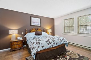 Photo 20: 3820 Cardie Crt in : SW Strawberry Vale House for sale (Saanich West)  : MLS®# 865975