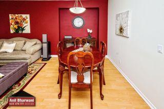 "Photo 5: 24113 102 Avenue in Maple Ridge: Albion House for sale in ""Homestead"" : MLS®# R2499816"