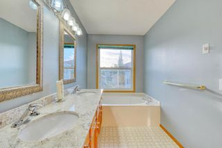 Photo 28: 355 HAMPSHIRE Court NW in Calgary: Hamptons Detached for sale : MLS®# A1053119