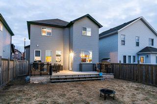 Photo 43: 6120 18 Avenue in Edmonton: Zone 53 House for sale : MLS®# E4254367