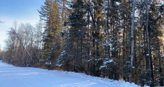 Photo 3: TWP 532 RR 274: Rural Parkland County Rural Land/Vacant Lot for sale : MLS®# E4223363