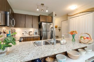 "Photo 15: C206 8929 202 Street in Langley: Walnut Grove Condo for sale in ""THE GROVE"" : MLS®# R2528966"