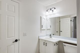 Photo 25: 18 Erin Meadow Close SE in Calgary: Erin Woods Detached for sale : MLS®# A1143099