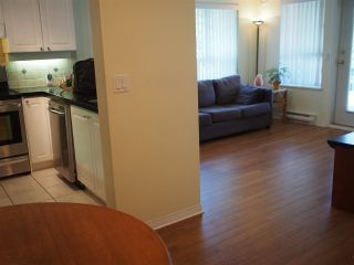 """Photo 8: 302 130 W 22ND Street in North Vancouver: Central Lonsdale Condo for sale in """"The Emerald"""" : MLS®# R2078620"""