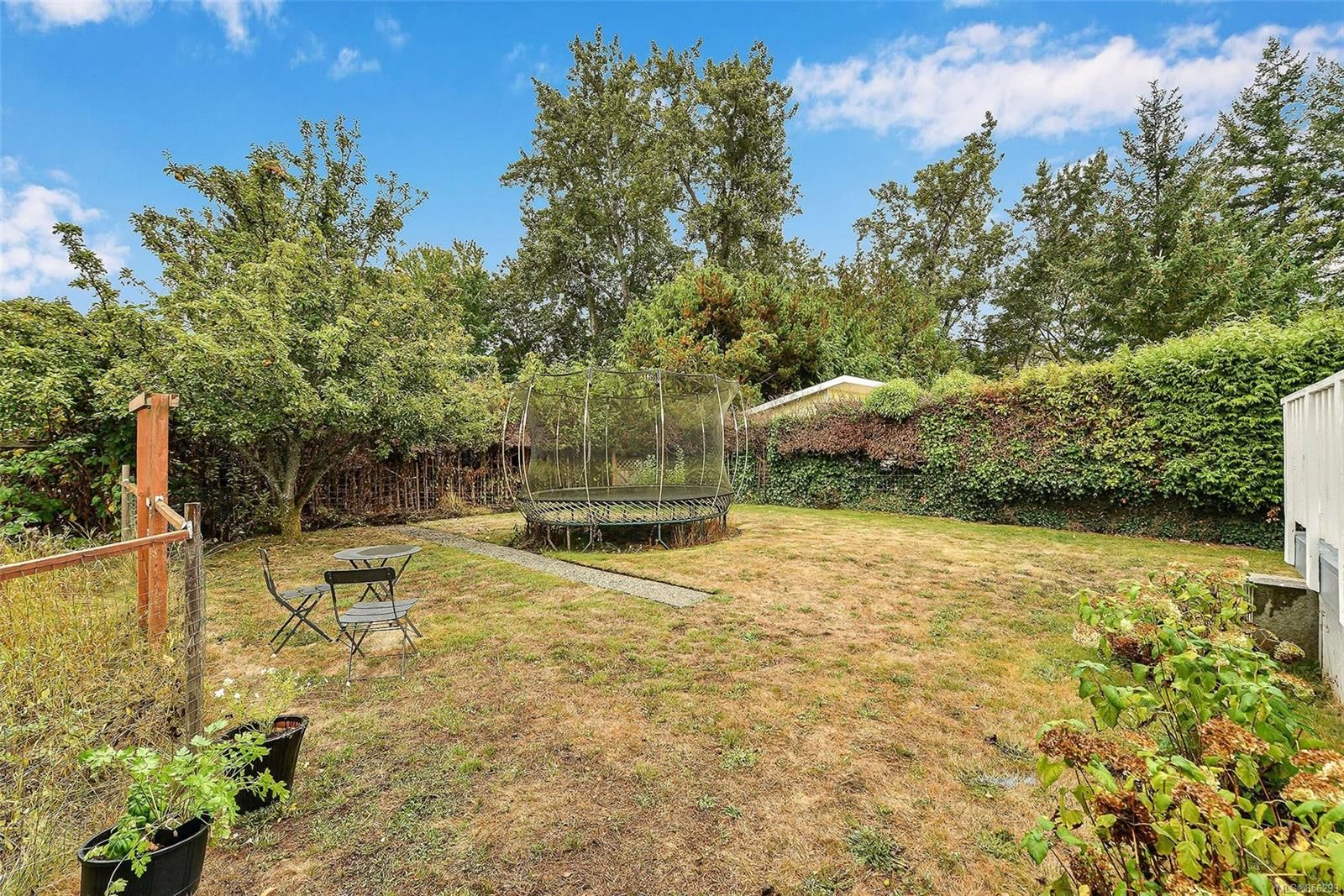 Photo 34: Photos: 1753 Armstrong Ave in : OB North Oak Bay House for sale (Oak Bay)  : MLS®# 856293