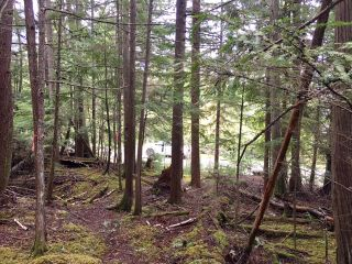 Photo 15: 3,4,6 Armstrong Road in Eagle Bay: Vacant Land for sale : MLS®# 10133907