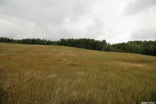 Photo 23: 154 Acres RM of Canwood in Canwood: Residential for sale (Canwood Rm No. 494)  : MLS®# SK868124