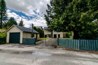 Photo 18: 1012 LONDON Street in New Westminster: Moody Park House for sale : MLS®# R2379004