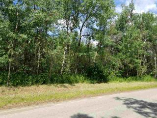 Photo 2: #43-25527- Twp Road 511A Road: Rural Parkland County Rural Land/Vacant Lot for sale : MLS®# E4226843