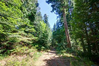 Photo 7: Lot 4 WAKEFIELD Road in Sechelt: Sechelt District Land for sale (Sunshine Coast)  : MLS®# R2428424