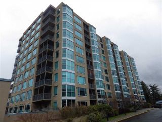 """Photo 1: 107 12148 224 Street in Maple Ridge: East Central Condo for sale in """"PANORAMA"""" : MLS®# R2153257"""