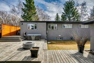 Photo 45: 16 Harley Road SW in Calgary: Haysboro Detached for sale : MLS®# A1092944