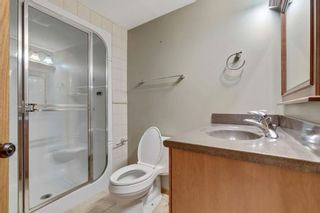 Photo 20: 87 Hawkford Crescent NW in Calgary: Hawkwood Detached for sale : MLS®# A1114162