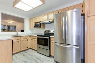 Photo 6: 101 1155 Dufferin Street in DUFFERIN COURT: Home for sale : MLS®# R2213050